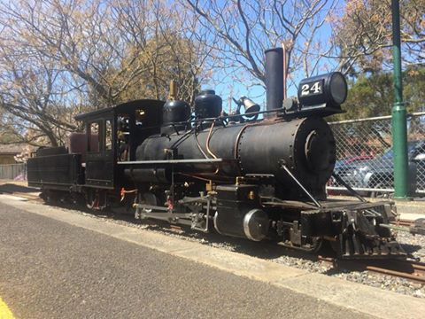 Sandy the Steam Train
